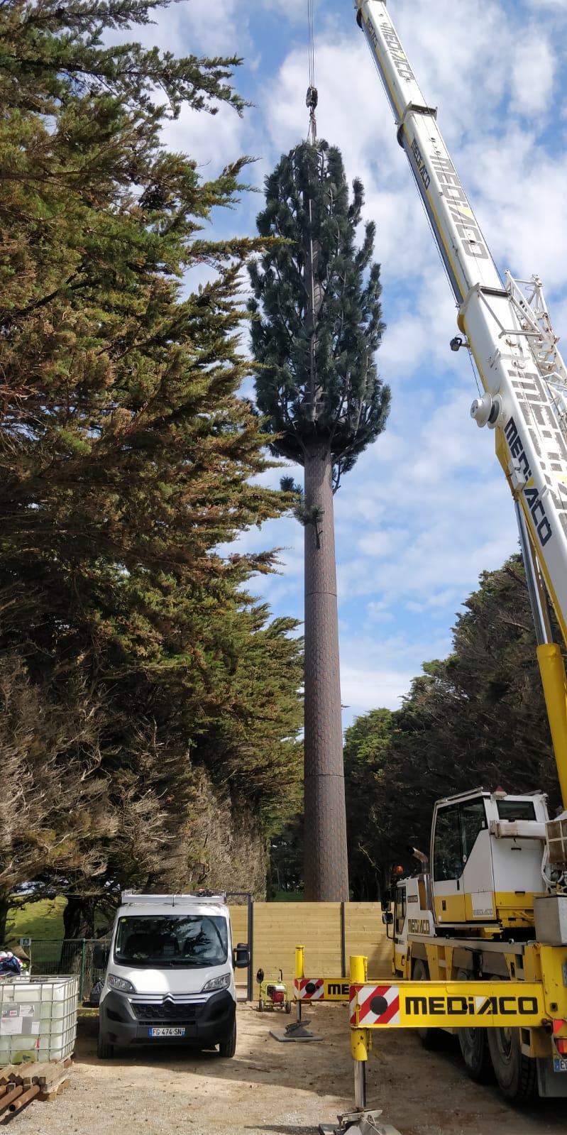 Montage d'un pylône arbre